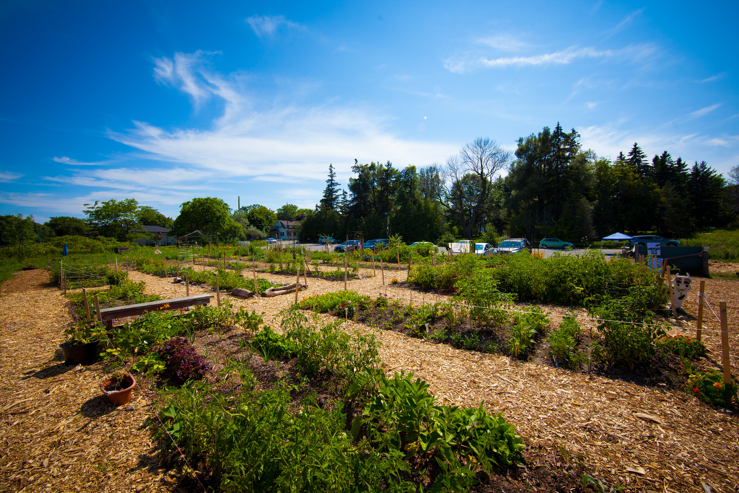 GardenTour2015-75.jpg
