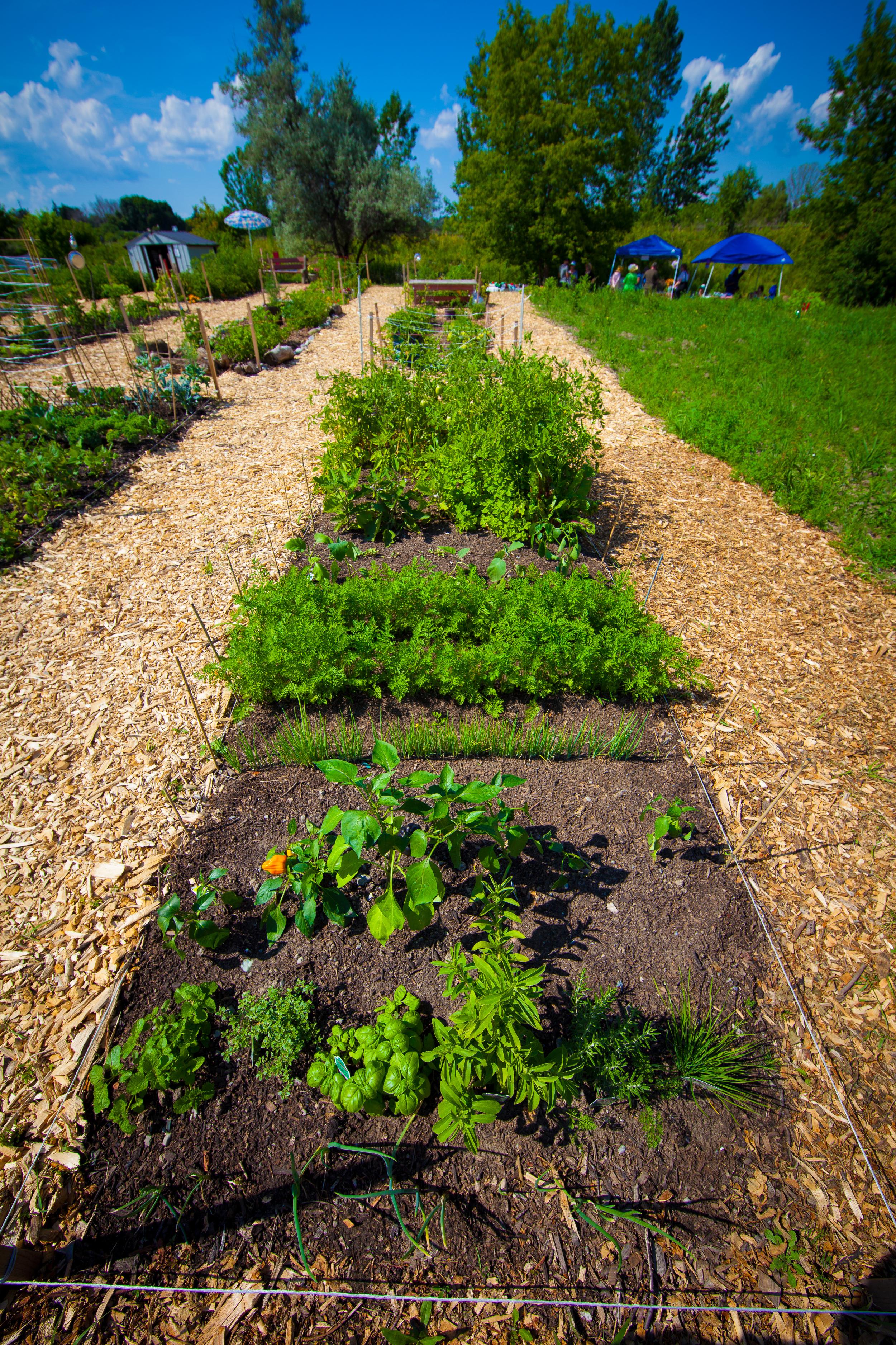 GardenTour2015-77.jpg