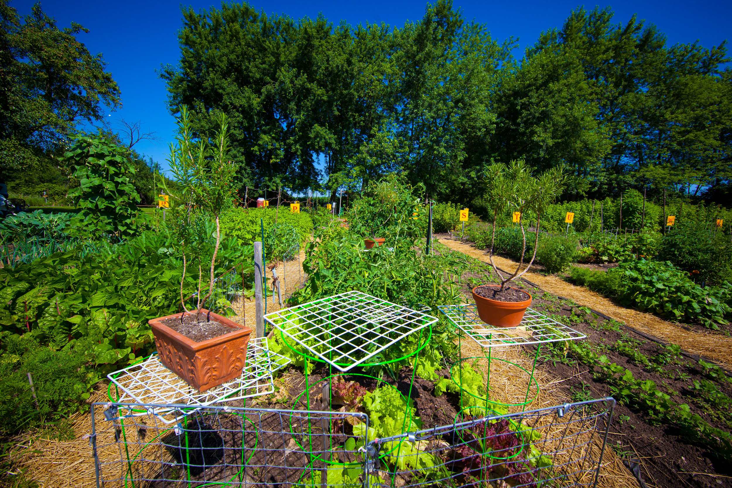 GardenTour2015-15.jpg
