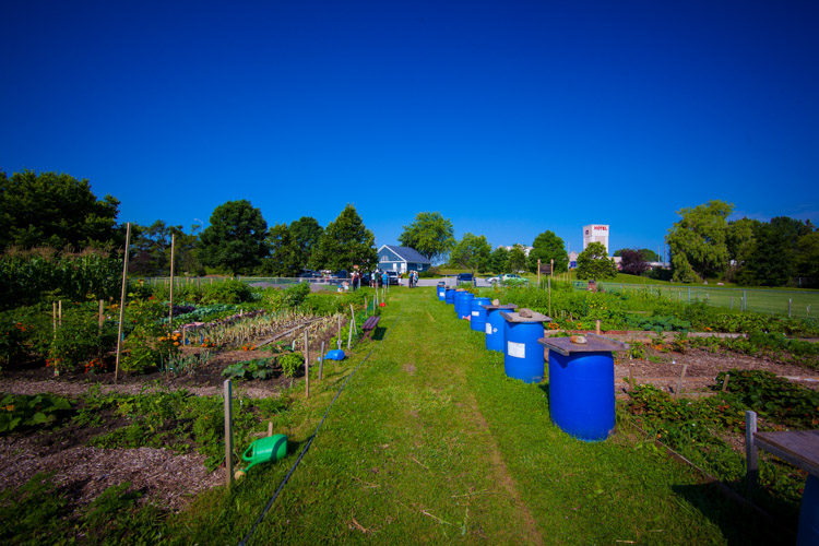 GardenTour2015-2.jpg