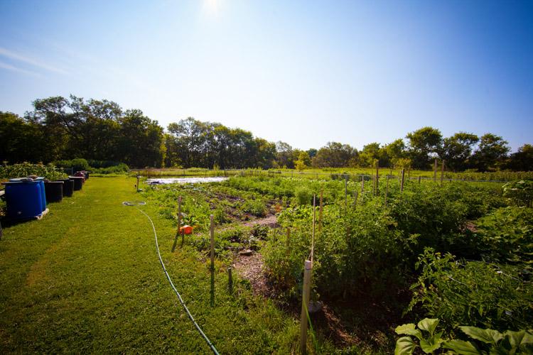 GardenTour2015-5.jpg