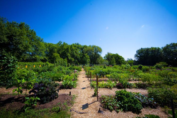 GardenTour2015-14.jpg