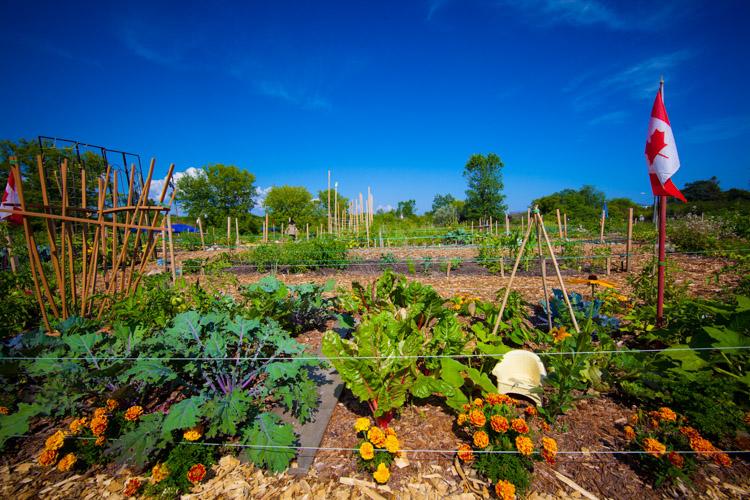 GardenTour2015-80.jpg