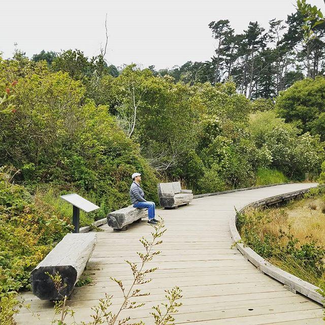 Join our Nature Meditation Walk on July 27  https://www.eventbrite.com/e/nature-meditation-walk-tickets-65317591675?aff=eand