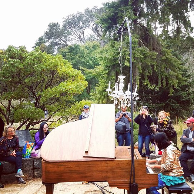 Pianos in nature  #natureinthecity  #flowerpiano
