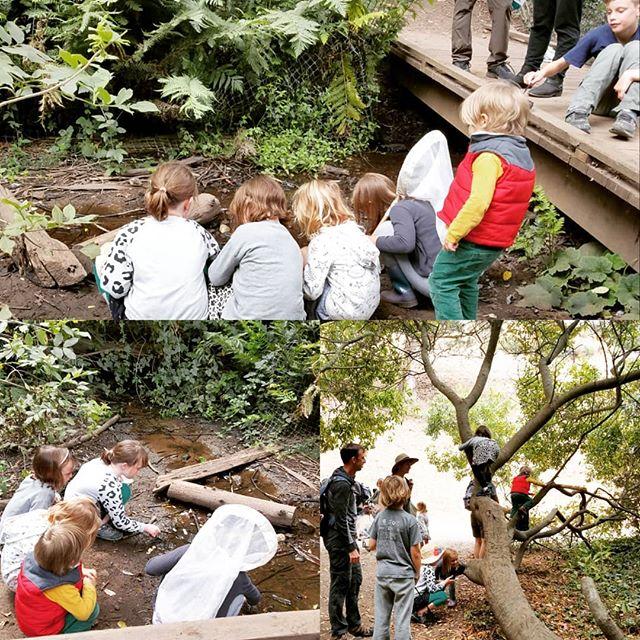 Family fun at the Bug Bioblitz in Glen Canyon Park.  #kidsinnature #girlsinscience