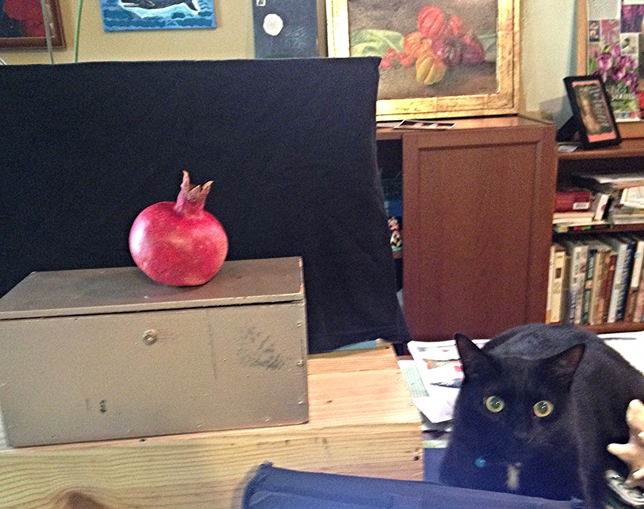 Studio Cat enjoys a good still life.