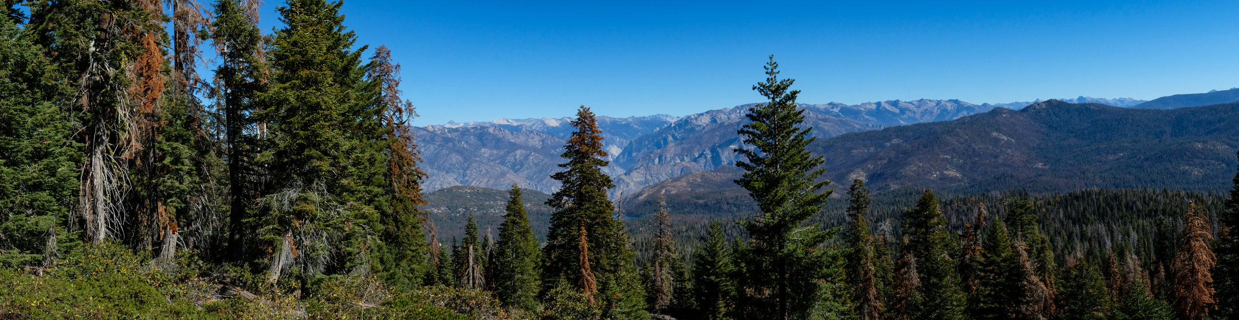 Kings Canyon National Park from Panoramic View Trail, CA