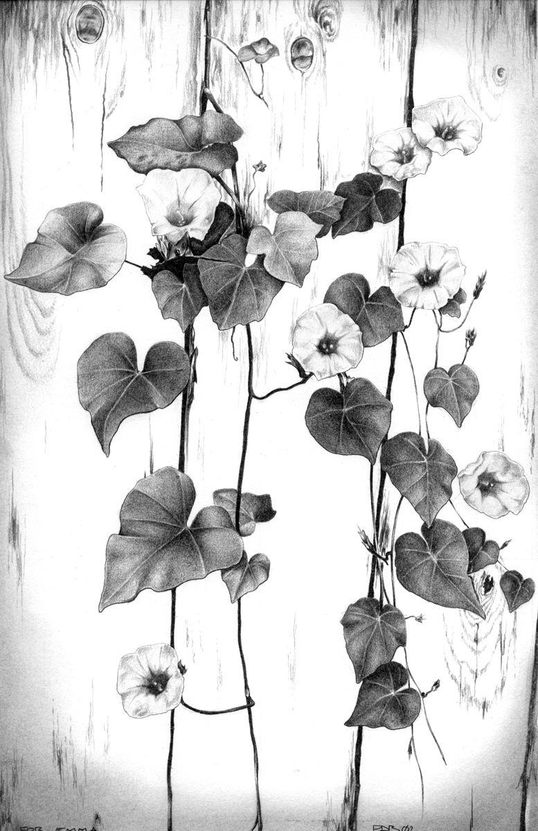 emma_flowers drawing edit.jpg