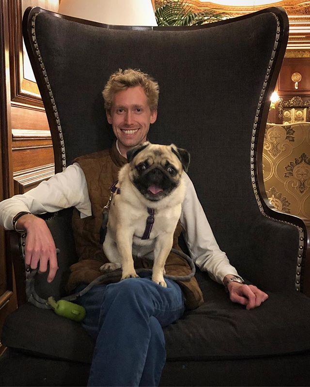 No Boston Cream Pies for this Princess. #pug . . . . . #fawnpug #pugsofinstagram #pugsofig #instapug #dogsofinstagram #dogsofinsta #instadog #boston #hotel #travel #lifestyle #dog #puppy #selfie #photo #photography #potd #bostonblogger #lifestyleblogger #realestate #coldwellbanker #history #luxury #puglife #pugstagram