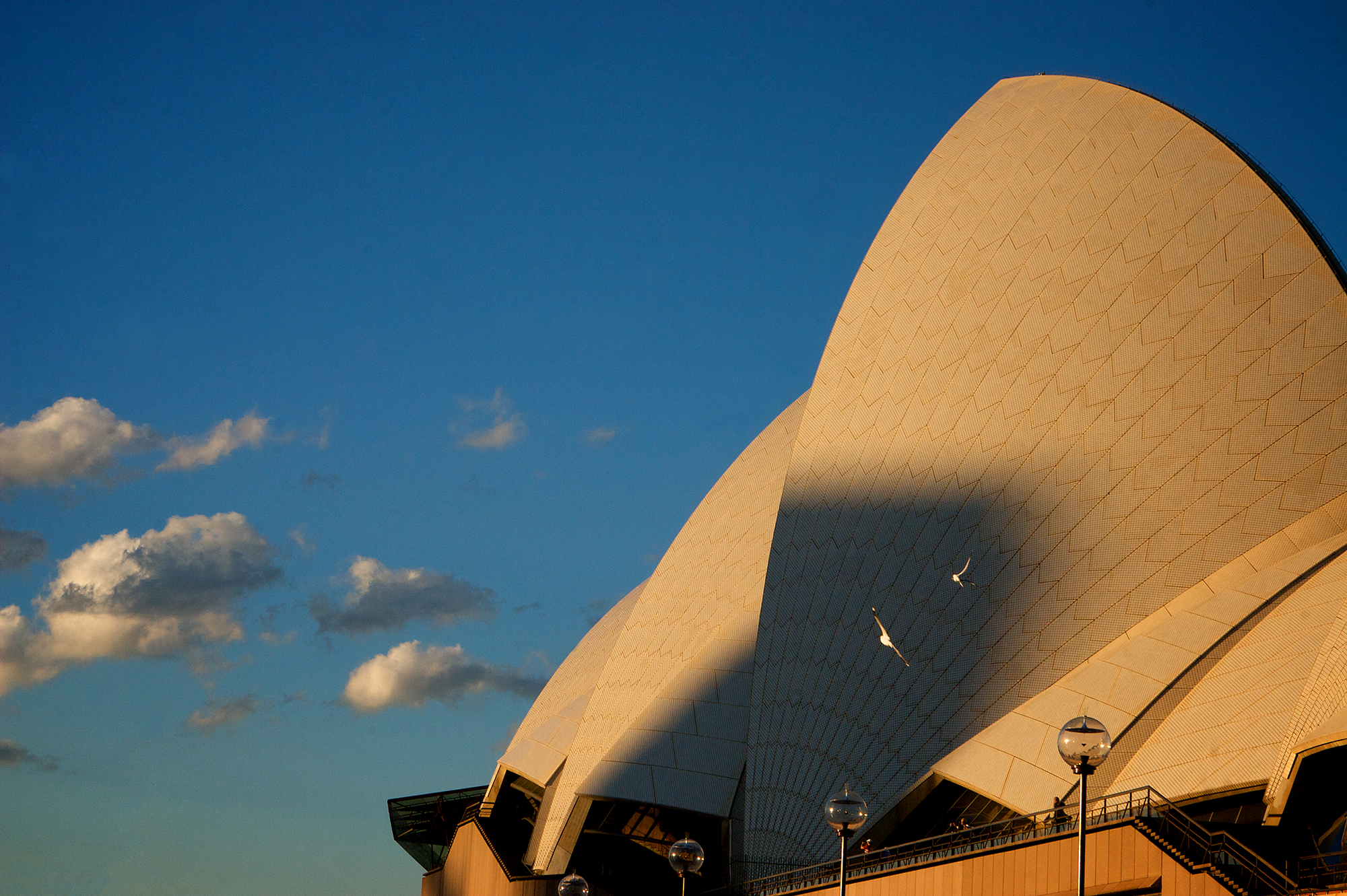 OperaHouse - Version 3.jpg