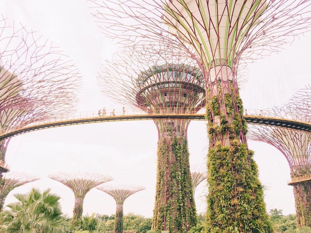 Gardens by the Bay 2.jpg