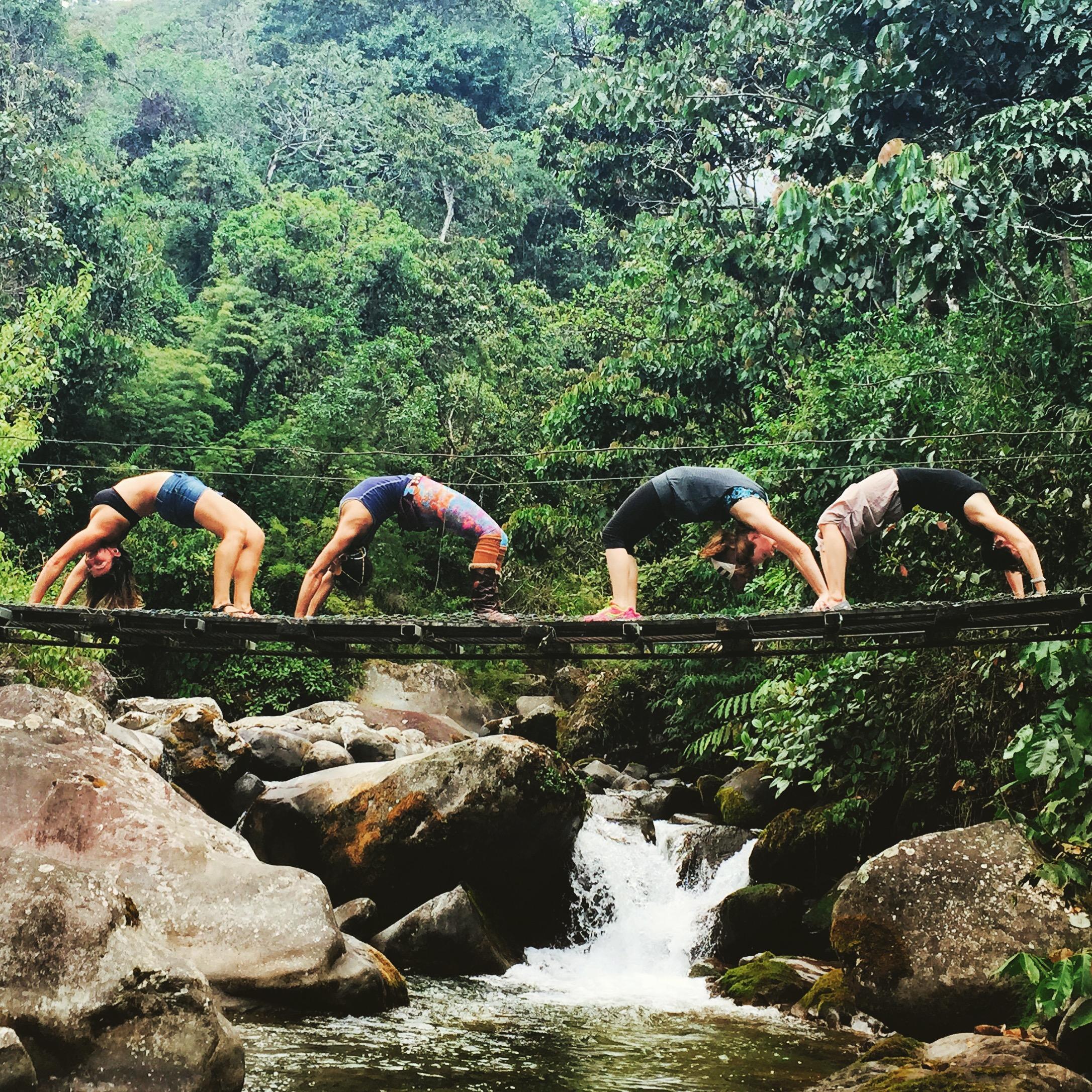 Life Force yoga