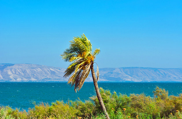 israel-sea-of-galilee-kibbutz-ginosar.jpg
