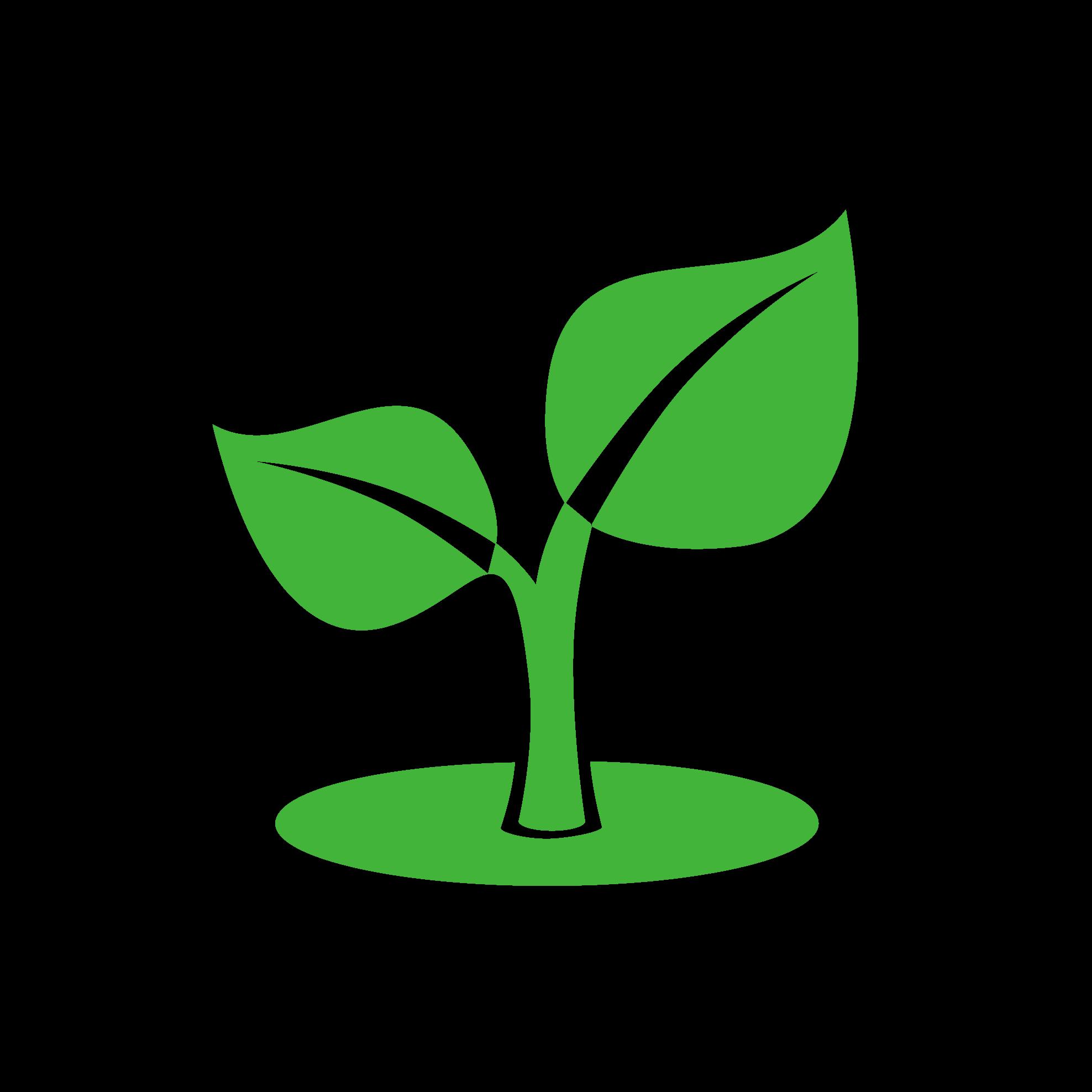 logo(7).png
