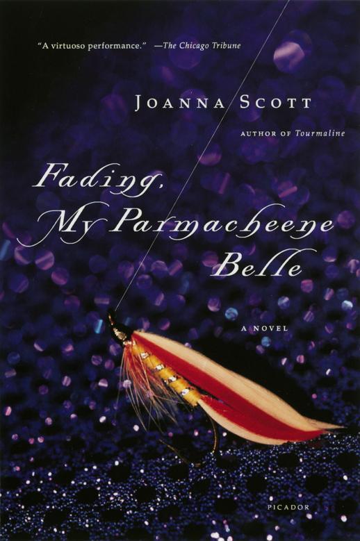 Fading, My Parmacheene Belle, a novel by Joanna Scott