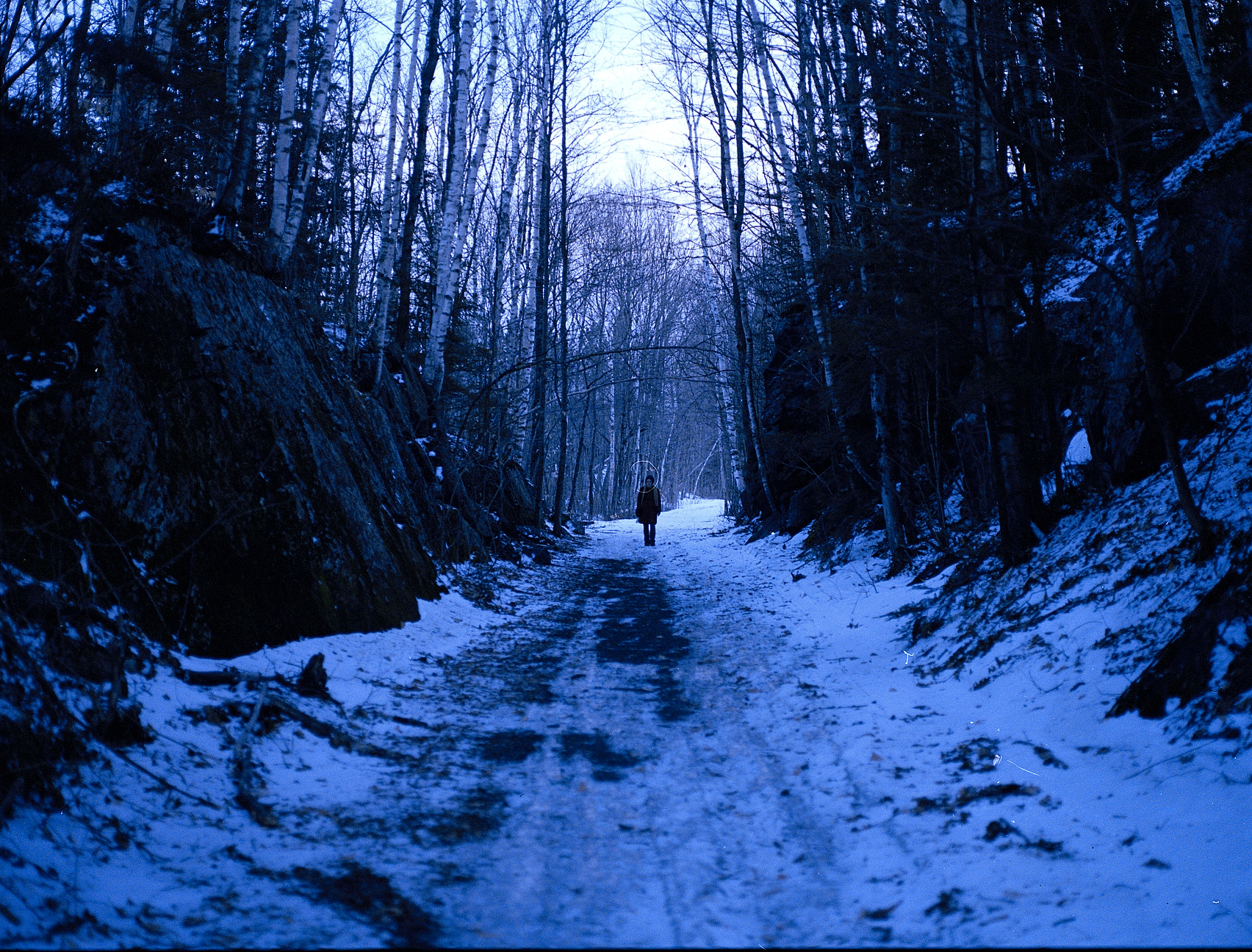 appala trail1.jpg