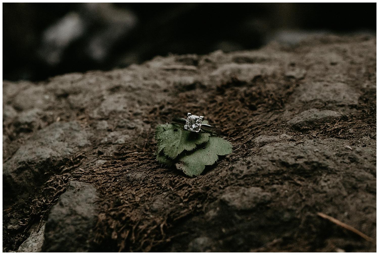 wahclella-falls-engagement_0019.jpg