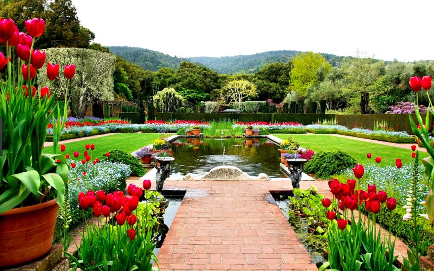 fertility garden