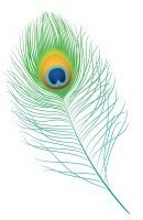 Feather1-e1401902880943.jpg