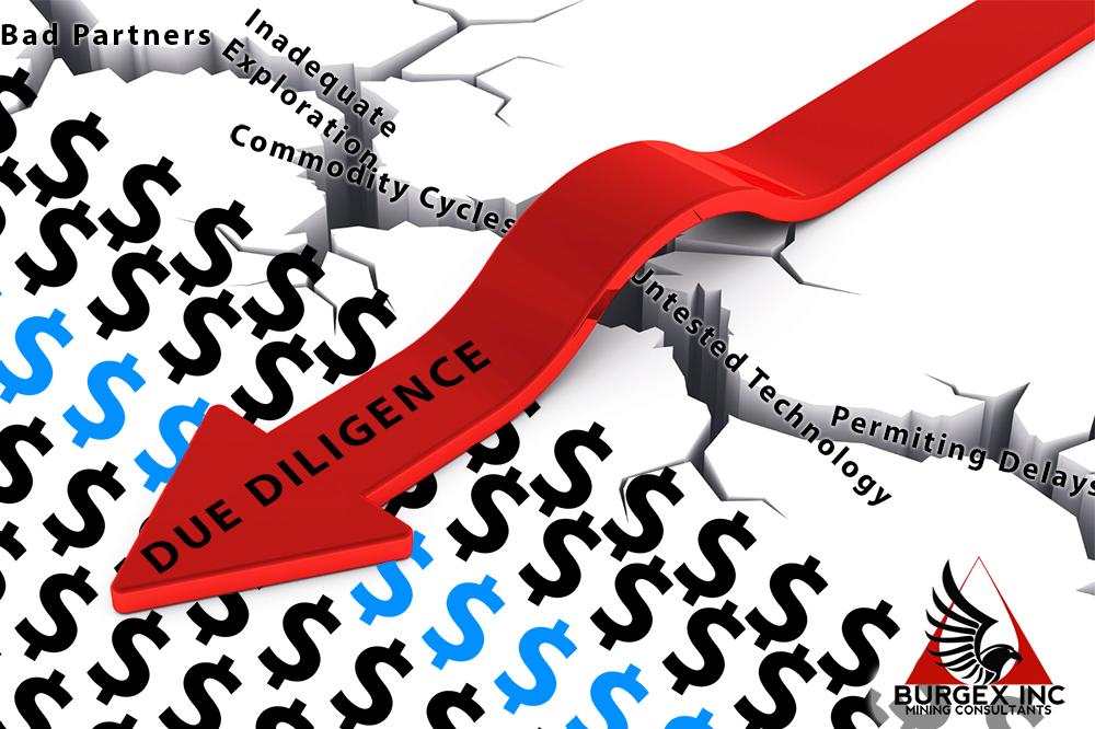 Burgex_Due-Dilligence.jpg