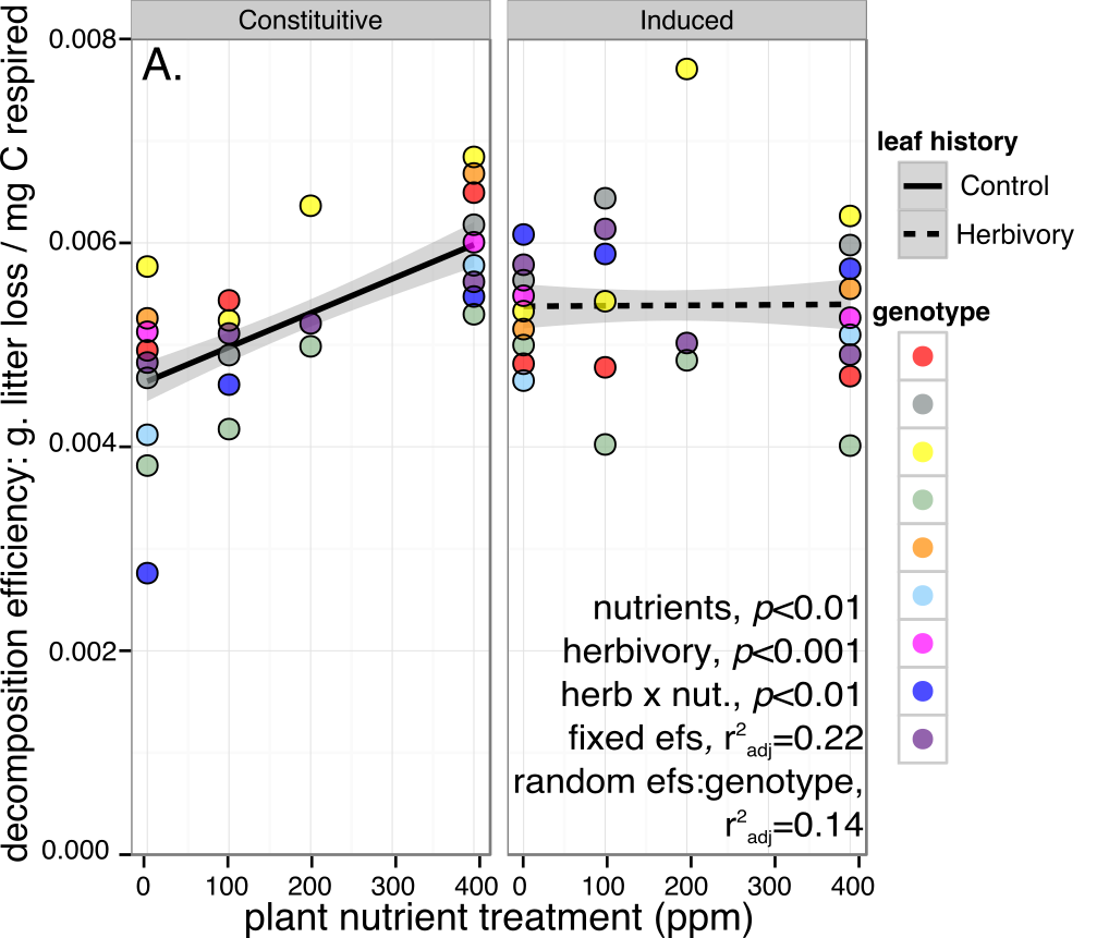 Distasteful plants to herbivores are decomposed less efficiently by microbes - Here, a legacy of herbivory cancels out the positive effect of nutrient fertilization on microbial processing of litter from the same plants