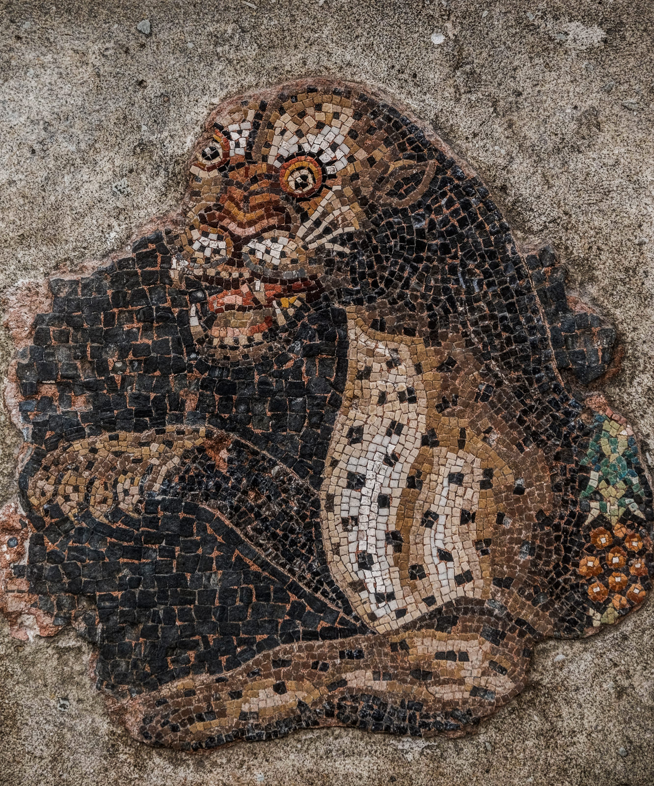 Fragment of a mosaic, Delos