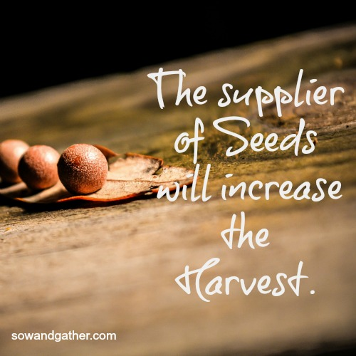 the supplier of seeds will increase the harvest sowandgather.com