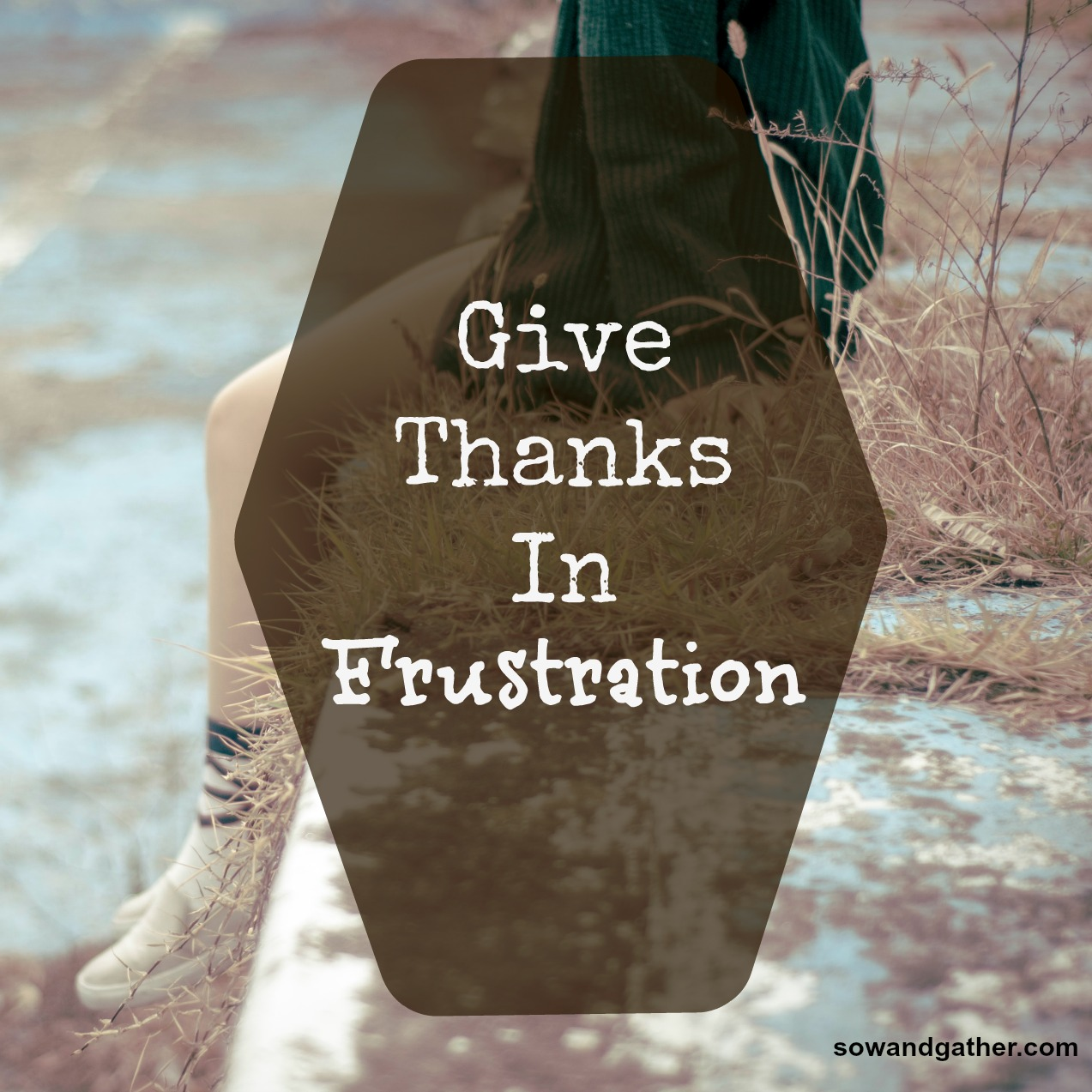 give-thanks-in-frustration-sowandgather.com