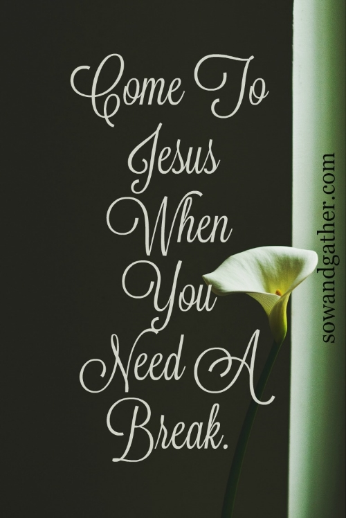 Come-To-Jesus-When-You-Need-A-Break sowandgather.com #sowandgather #Easter
