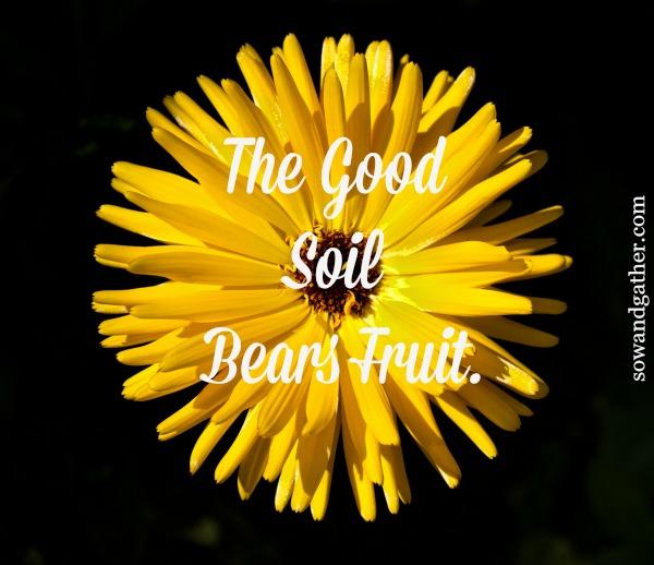 the-good-soil-bears-fruit #sowandgather #transformation