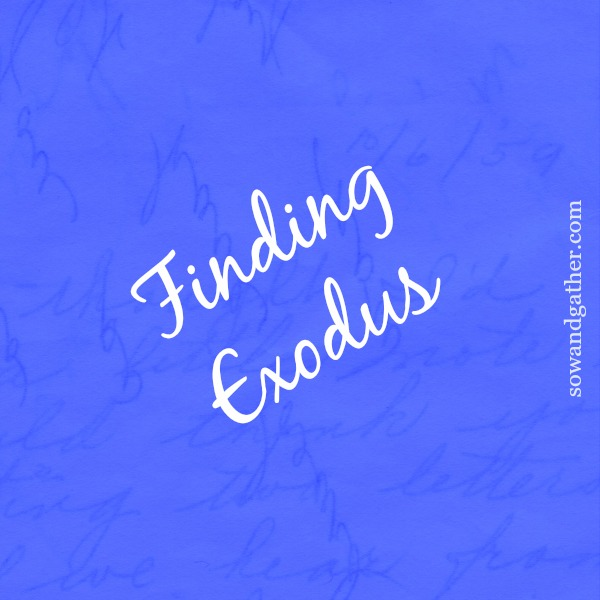 finding-exodus #sowandgather #transformation