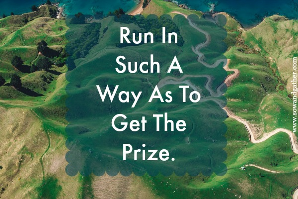 run in such a way as to get the prize. #sowandgather #encouregement #encourage