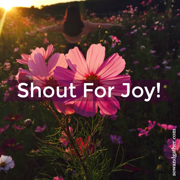 shout for joy #sowandgather