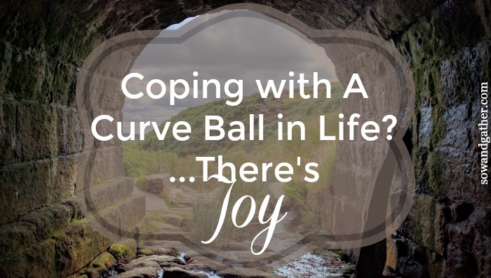 coping-with-a-curve-ball-in-life-theres-joy #sowandgather #joy #jesus