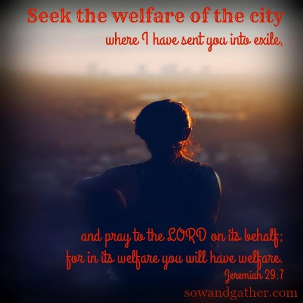 #sowandgather Seek The Welfare of the City Where I have Sent You. Jeremiah 29:7