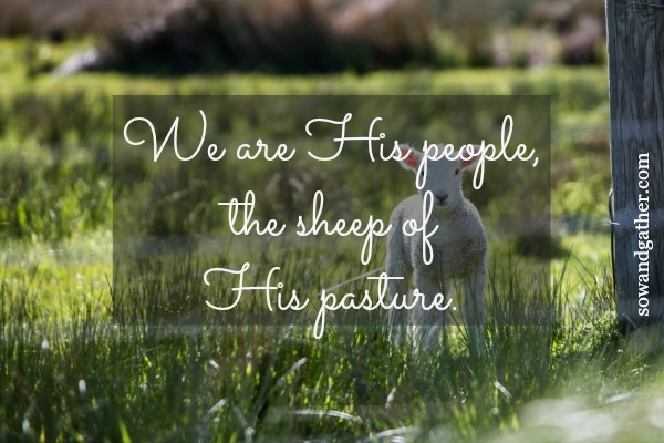 we are his people, the sheep of his pasture Psalm #sowandgather