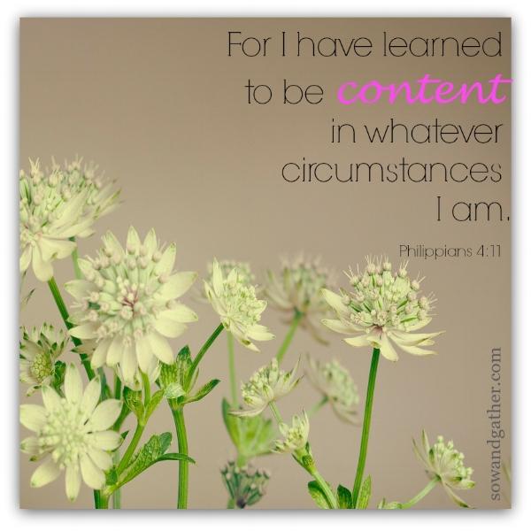 #sowandgather Philippians 4:11 #contentment
