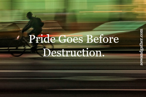 #sowandgather #fighttherightfight Pride Goes Before Destruction. Whose opinion shapes your decisions?
