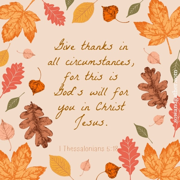 #sowandgather #thanksgiving Give Thanks In All Circumstances, For This Is God's Will for You In Christ Jesus. I Thessalonians 5:18
