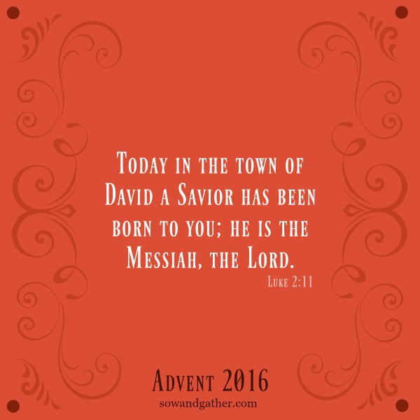 Today In The Town Of David A Savior has been born to you; He is the Messiah, the Lord. Luke 2:11 #Christmas #sowandgather #advent