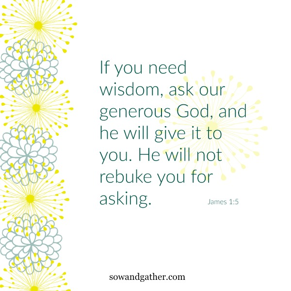 #wisdom #sowandgather James1:5 If you need wisdom, ask our generous God, and he will give it to you. He will not rebuke you for asking.