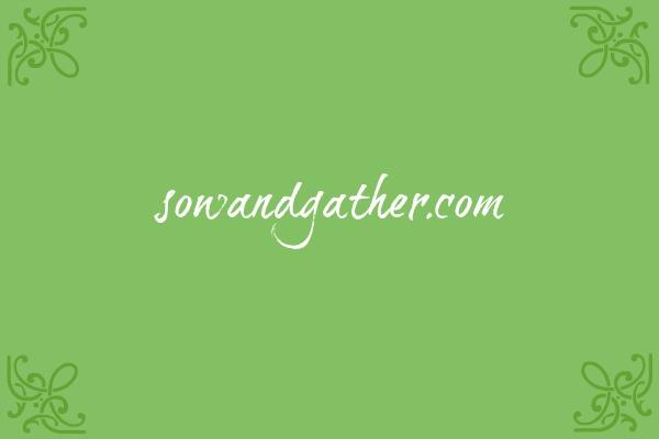#sowandgather #obedience