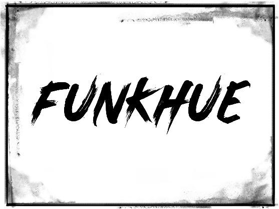 funkhue frame.jpg