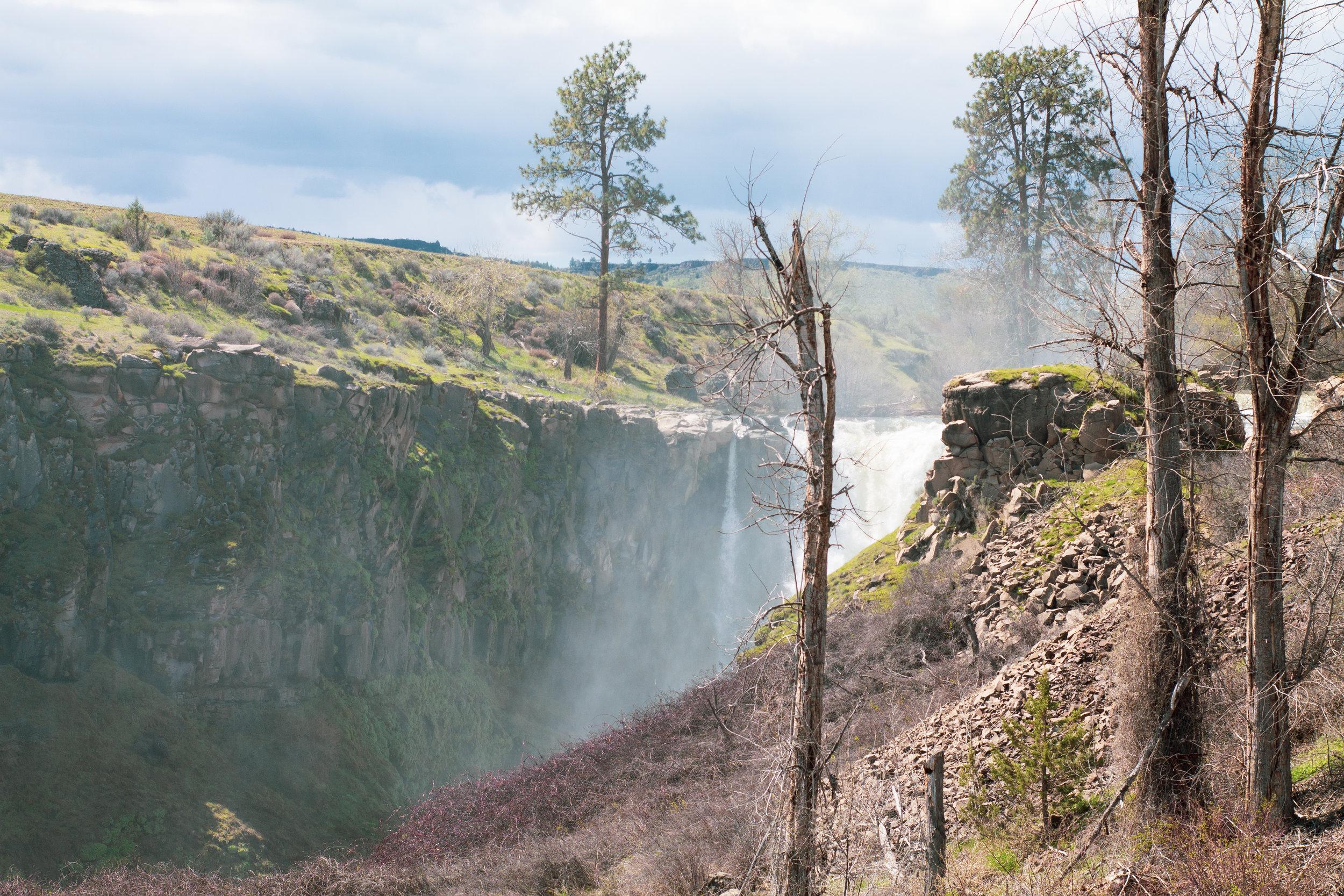 waterfall (1 of 1)-5.jpg