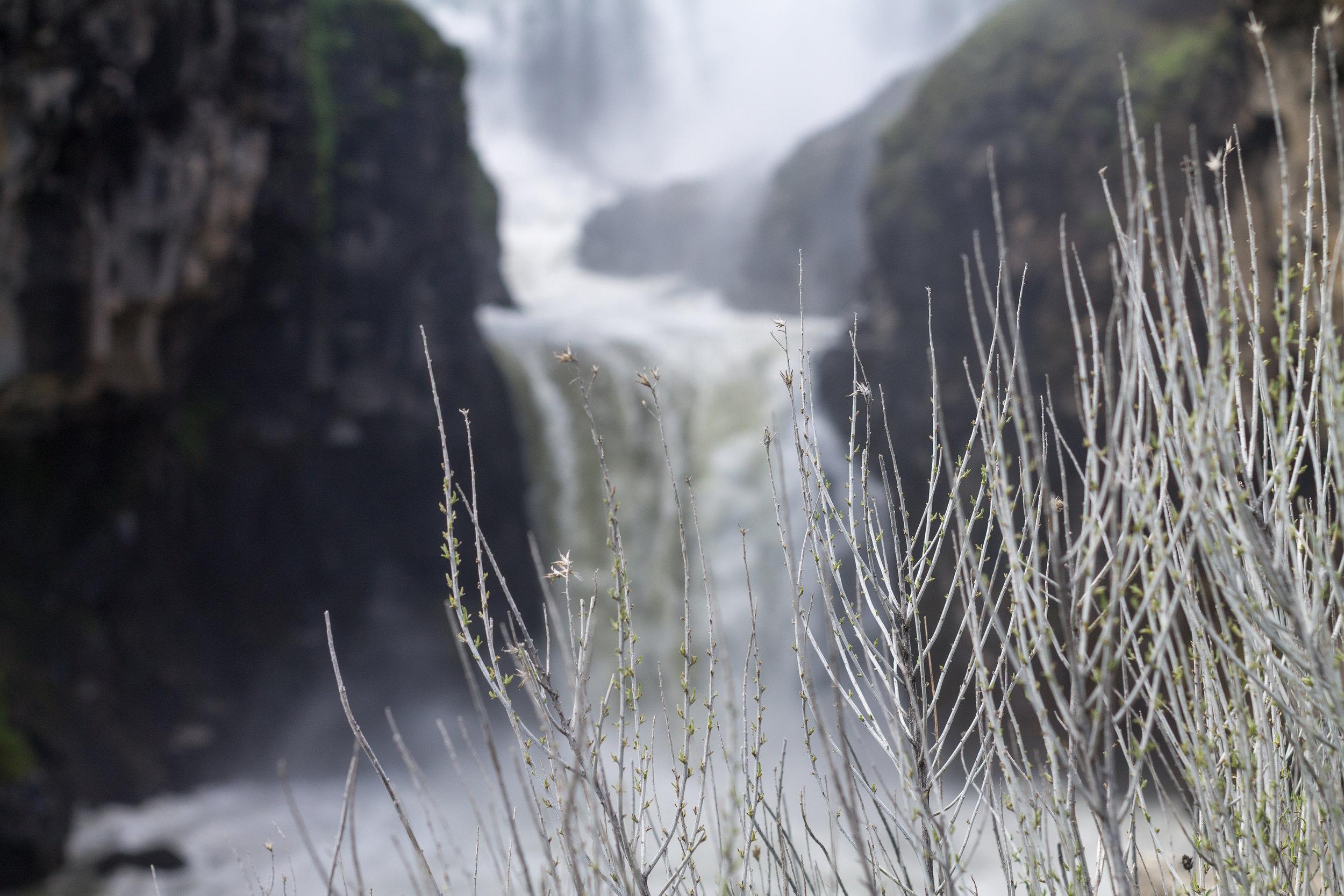 waterfall (1 of 1)-9.jpg