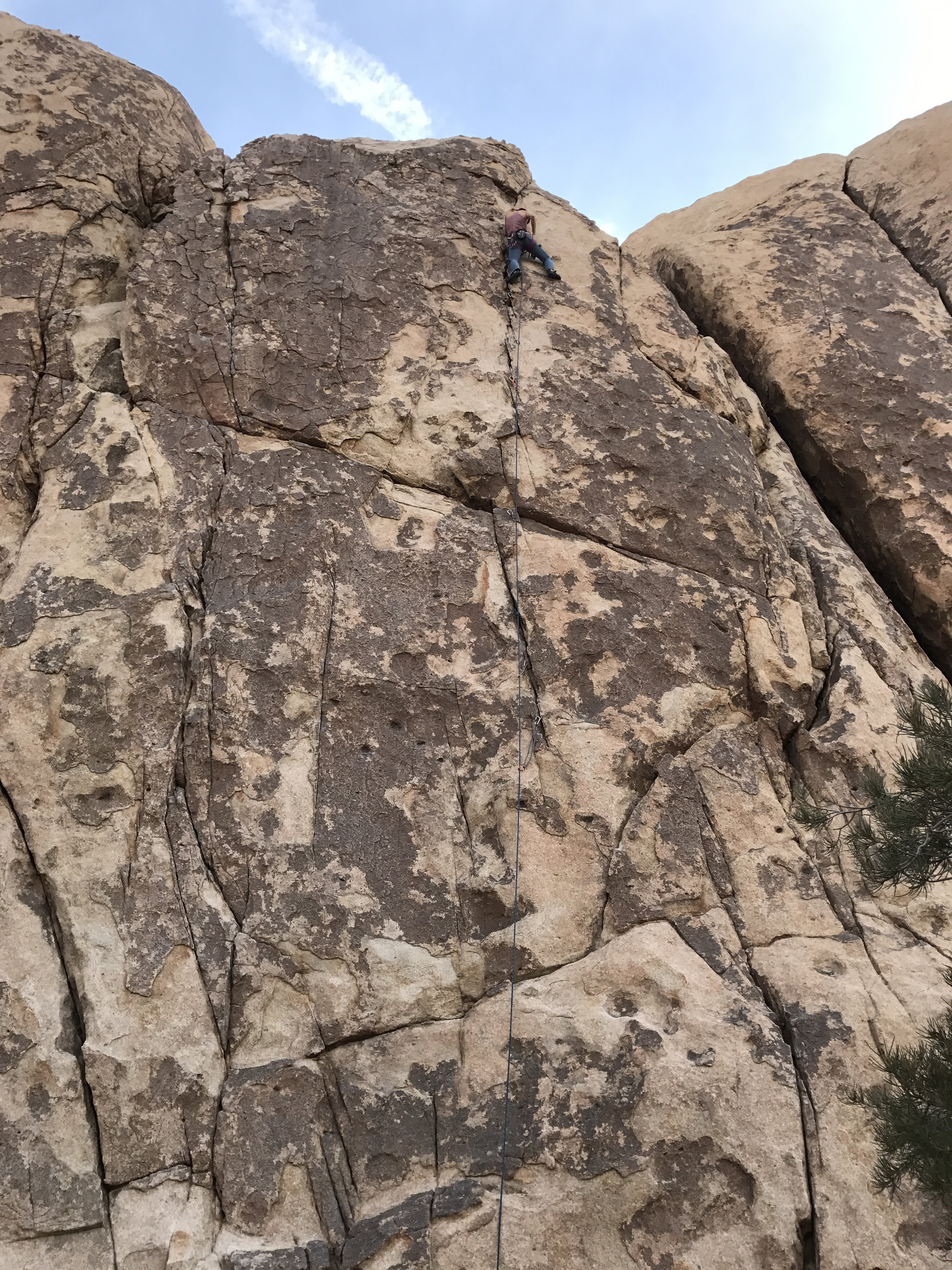 first postpartum trad lead, Joshua Tree