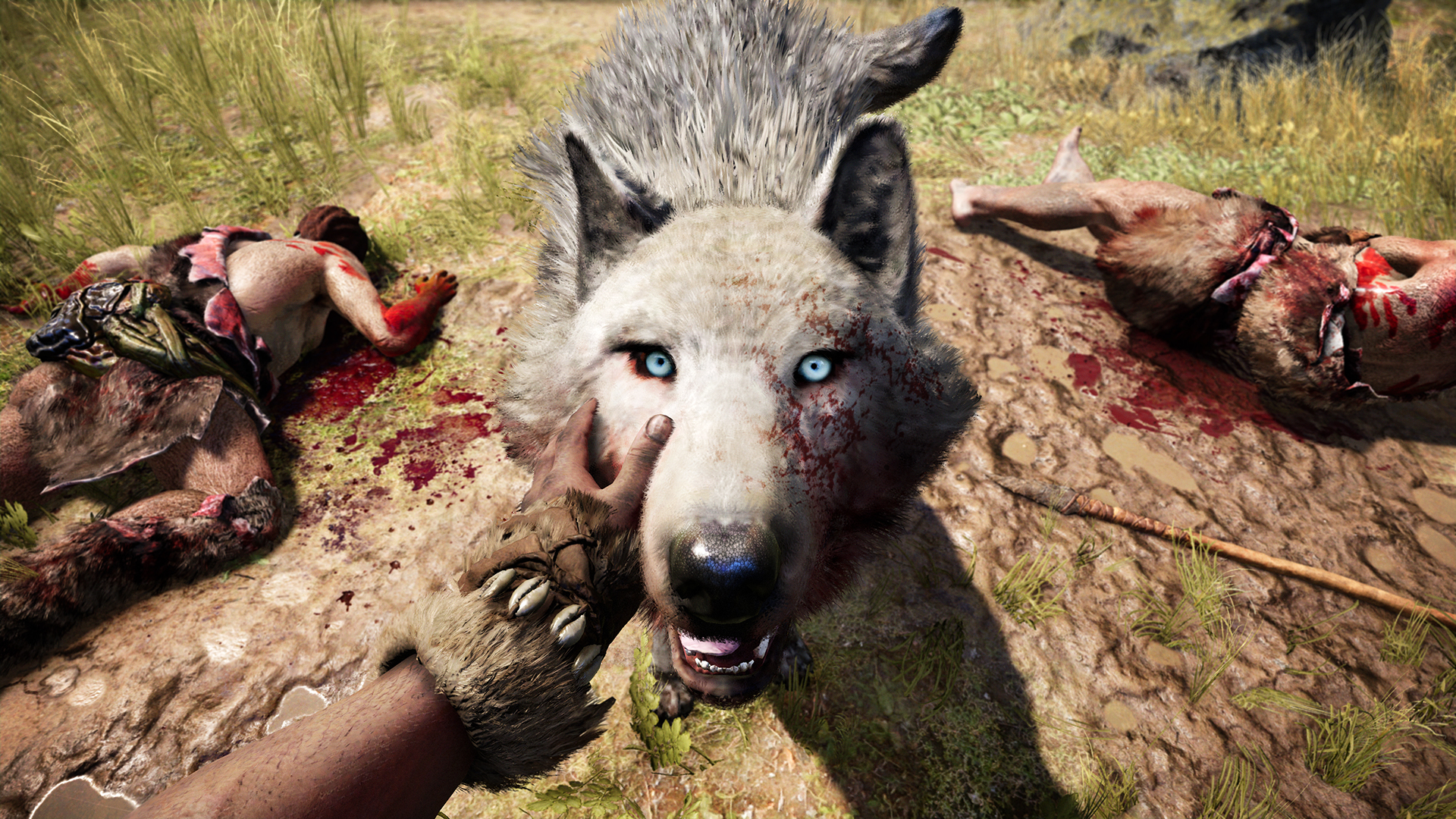 I found myself kneeling to pet my steel-eyed wolf friend after every encounter