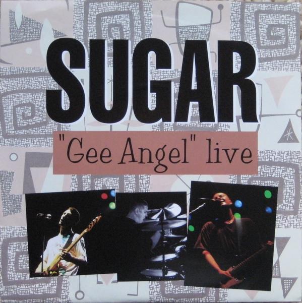 Sugar Gee Angel.jpg
