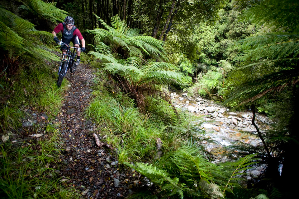 Weir-NZ-Trip328